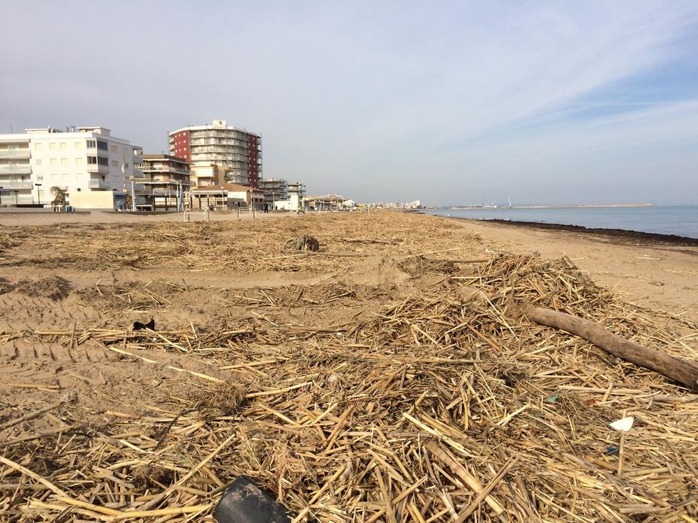 Miramar y Daimús evalúan los daños del temporal en sus playas