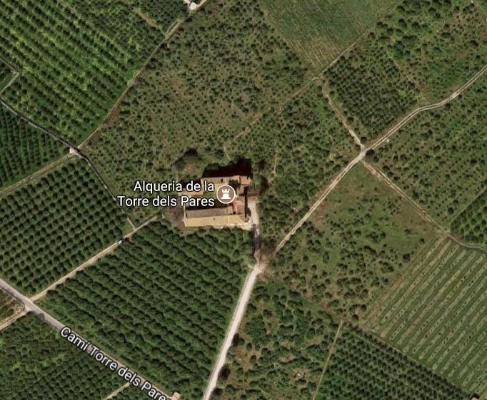 El Ayuntamiento de Gandia rentabiliza sus propiedades de naranjas